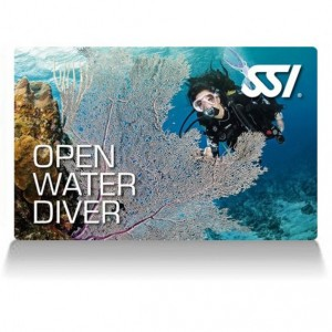 STAGE OPEN WATER DIVER SSI : 21-22 mars 2020
