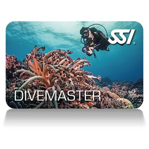 formation-divemaster-ssi-paris