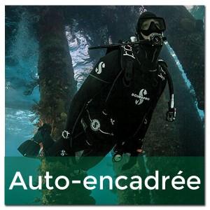 PLONGEE D'EXPLORATION AUTO-ENCADREE