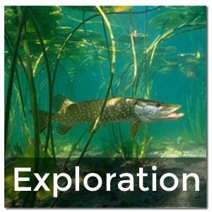 Plongée d'exploration